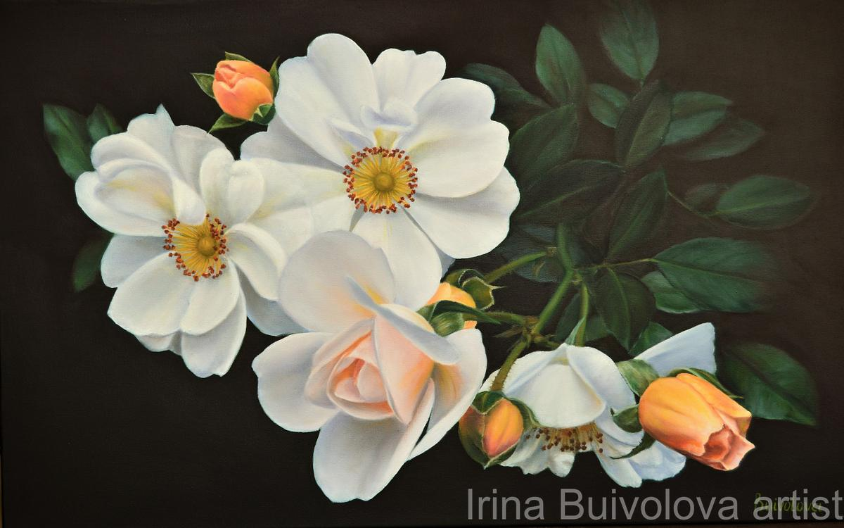 Branch of cream rose painting oil on canvas size 50 80 cm