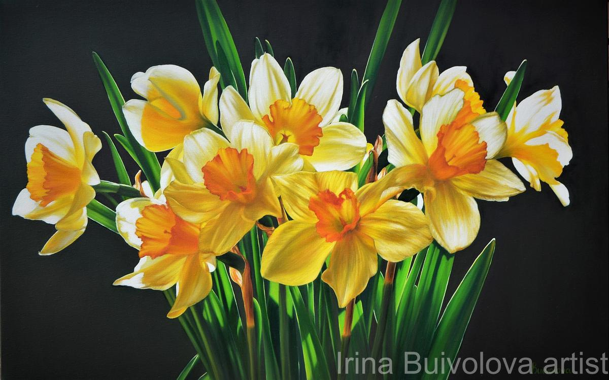 yellow flowers narcissus painting oil on canvas size 70 110 cm