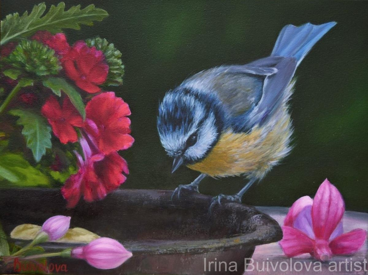 Titmouse in the garden, painting, oil on canvas size 30 40 cm