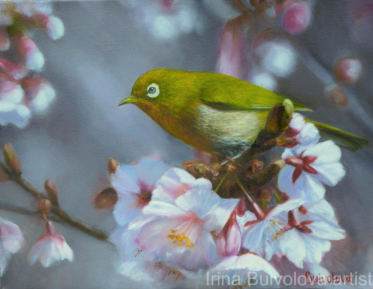 Bird in the spring garden, painting, oil on canvas size 35 45 cm