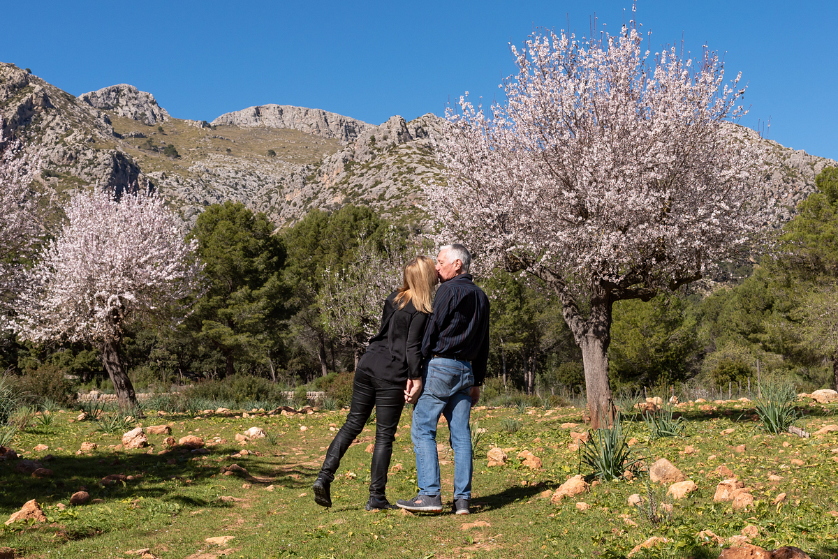 Love & Almond Blossoms. Couple Photoshoot at Finca Galatzo. Calvia, Mallorca