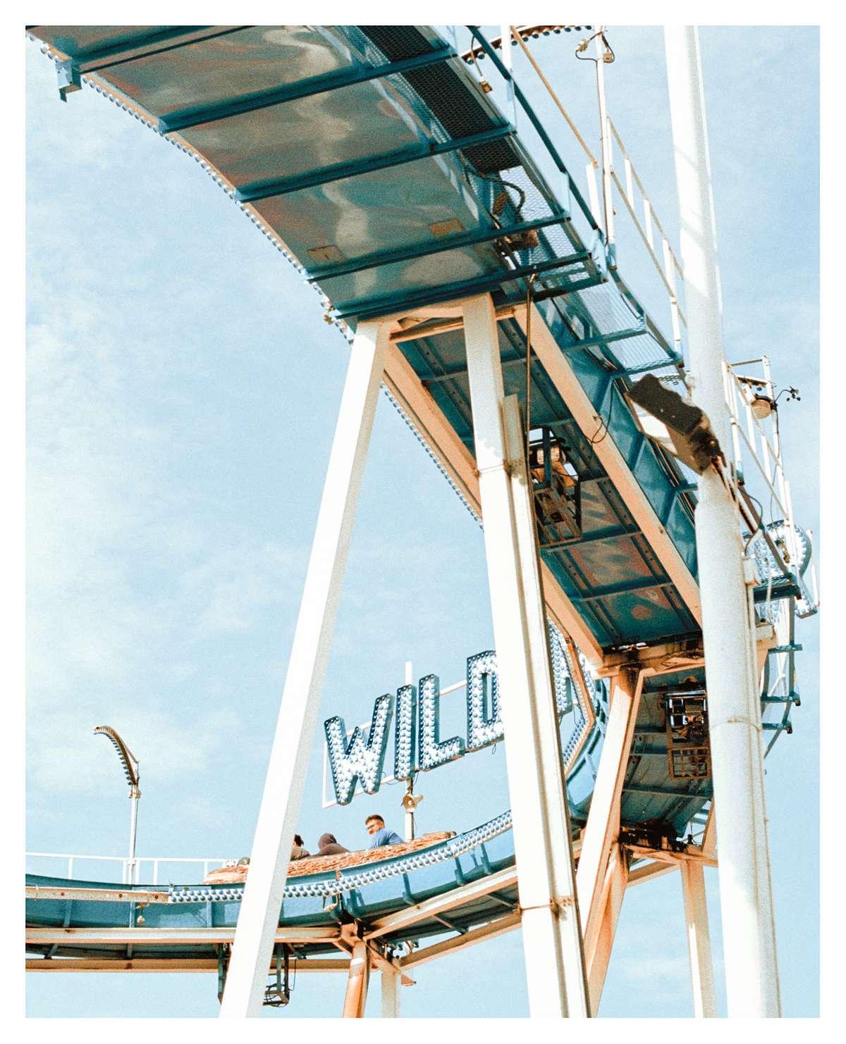 'WILD' - 16.2 x 20 inches - £80
