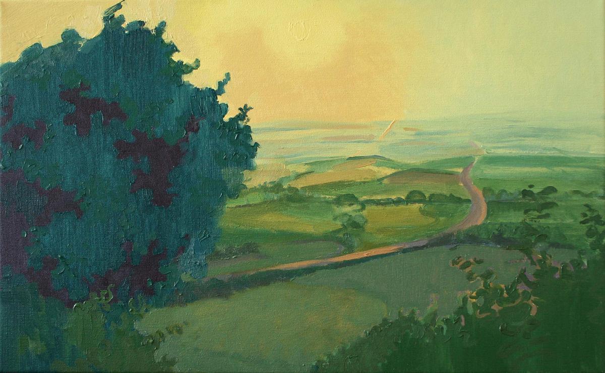 Summer sunset from Aston Rowant, oil on canvas
