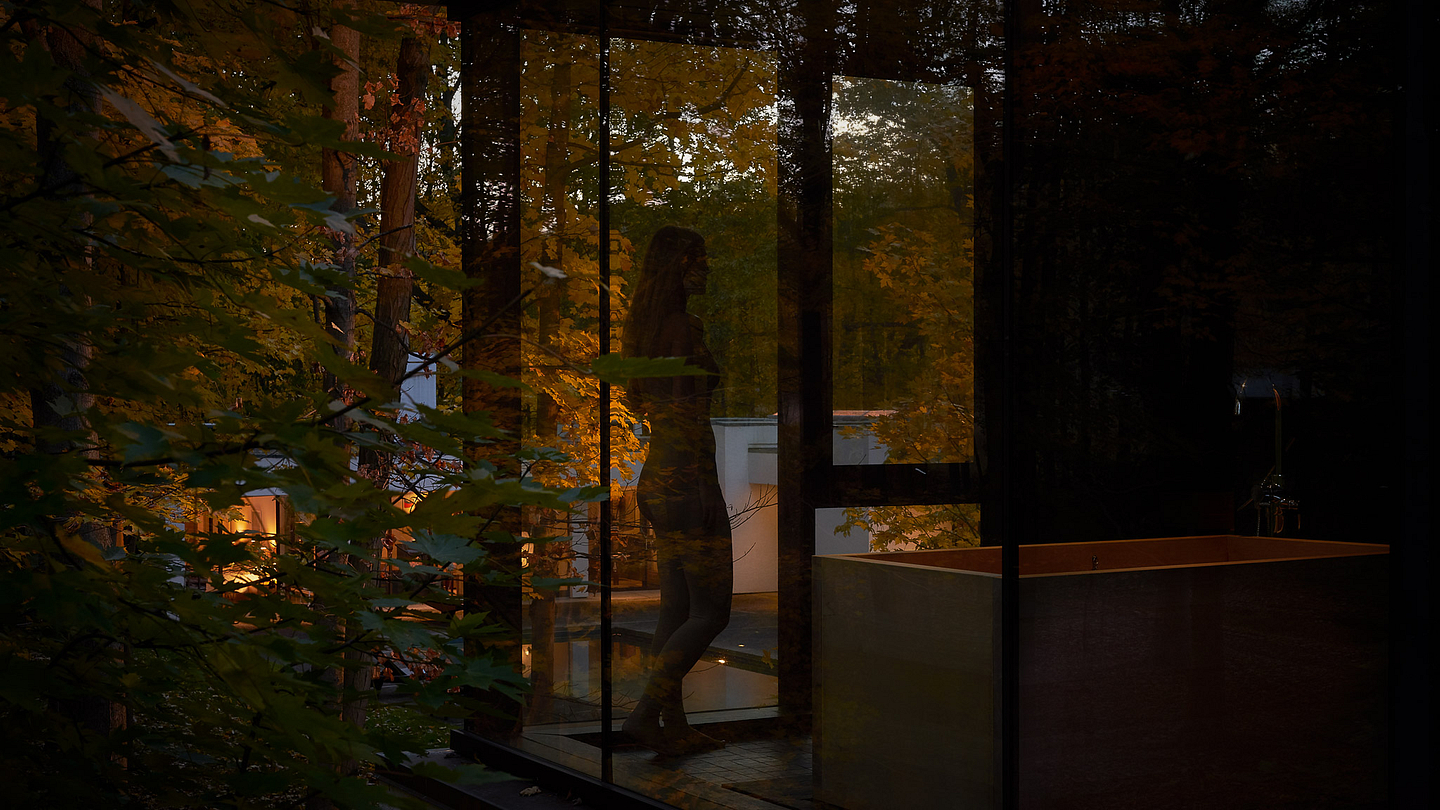 AIA Design Award, House in the Woods - Architectural Resources