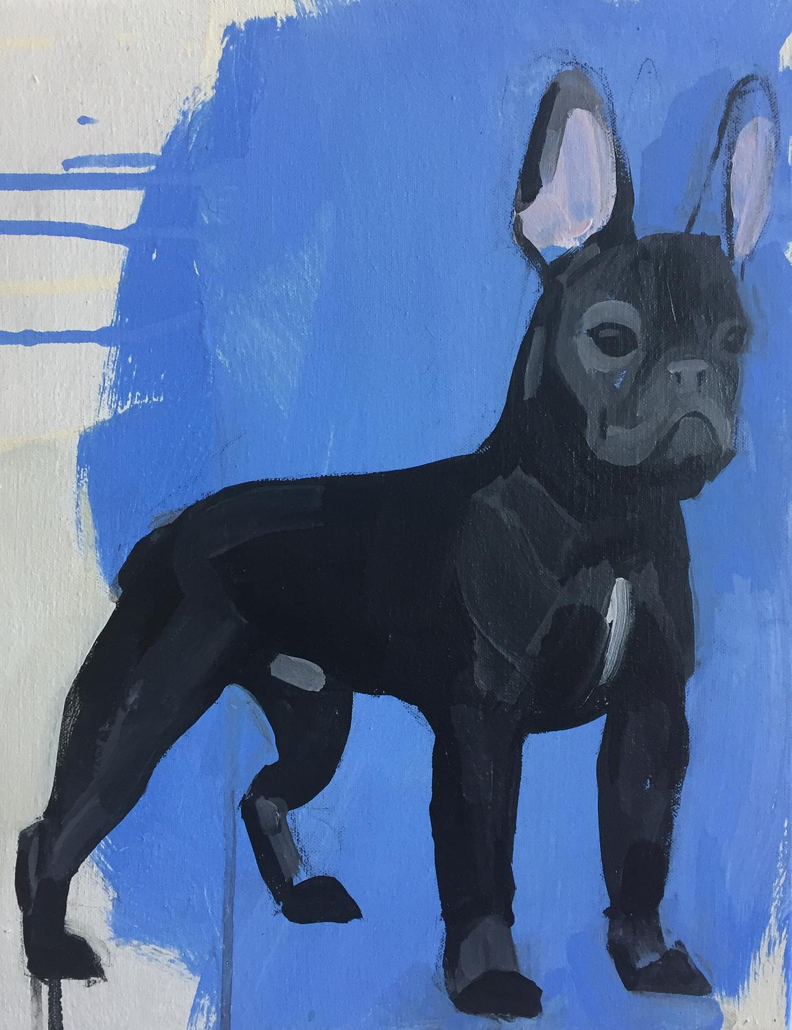"French Bulldog (Study #1), 2018, acrylic on canvas over panel, 14"" x 11"""