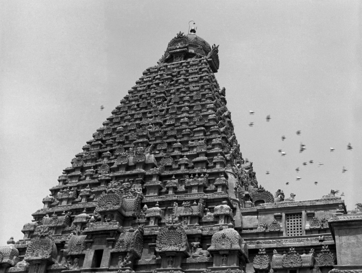 Brihadisvara Temple, Thanjavur, Tanjore 2014   Edition 1 of 2