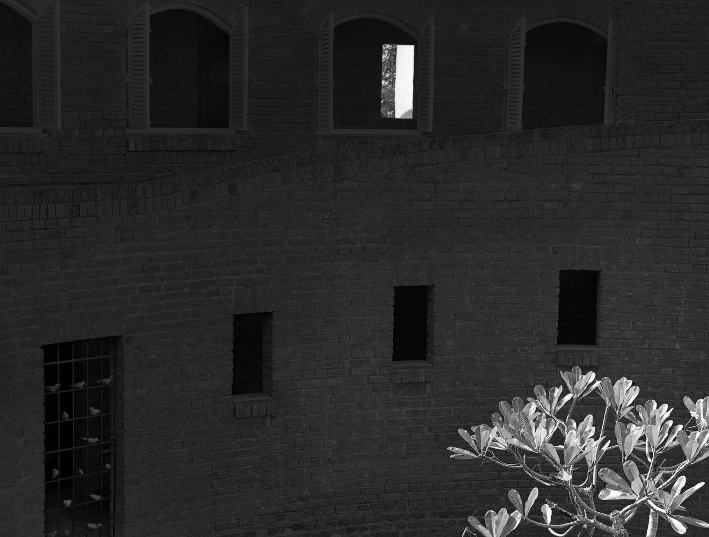Champa by the Windows, Raichak 2015   Edition 2 of 2
