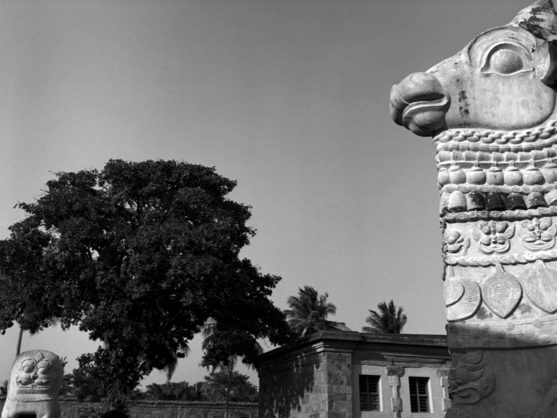 Simhakinar and Nandi at Brihadisvara Temple, Gangaikondacholapuram, Tanjore 2014   Edition 1 of 2