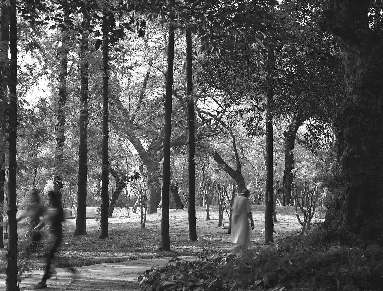 Past Future, New Delhi 2012   Edition 1 of 2