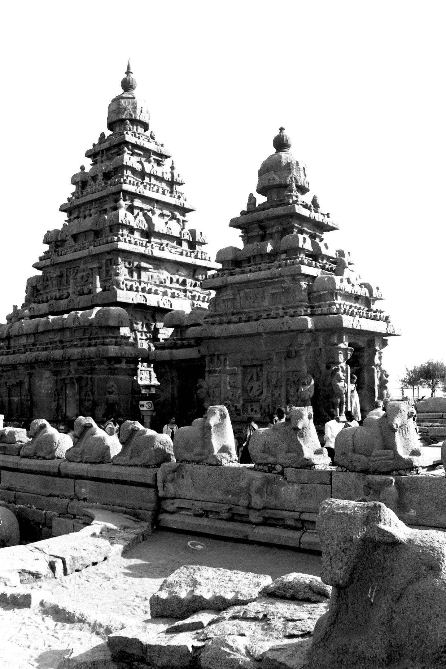 Shore Temple, Mahabalipuram 2020   Edition 1 of 2