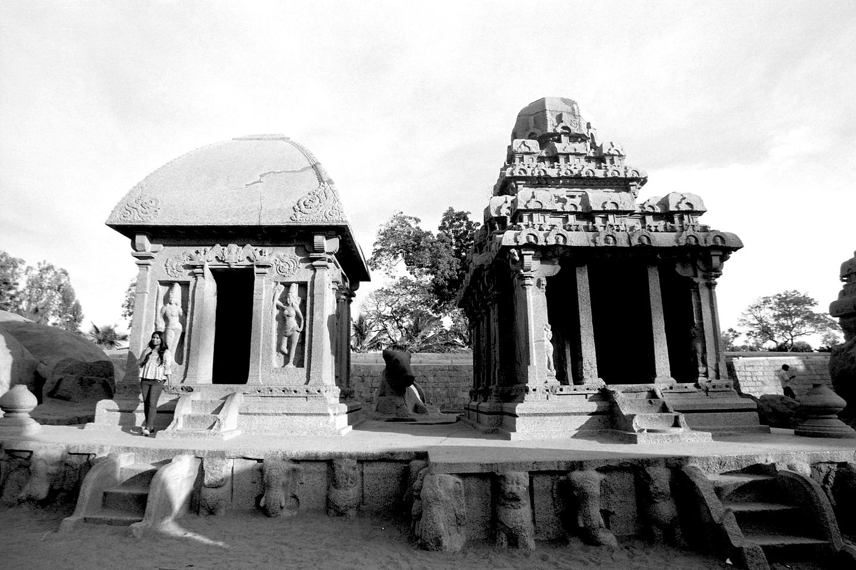 Nandi by the Mother Goddess, Mahabalipram 2020   Edition 1 of 2