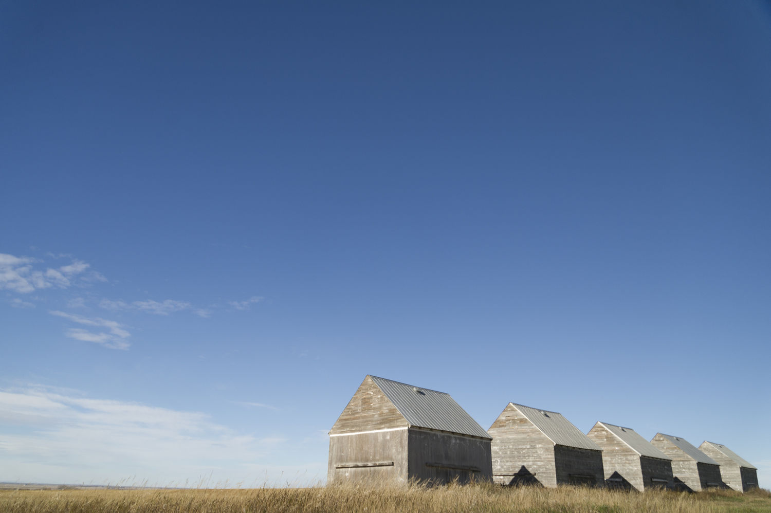 Old Grain Sheds- October 12, 2015