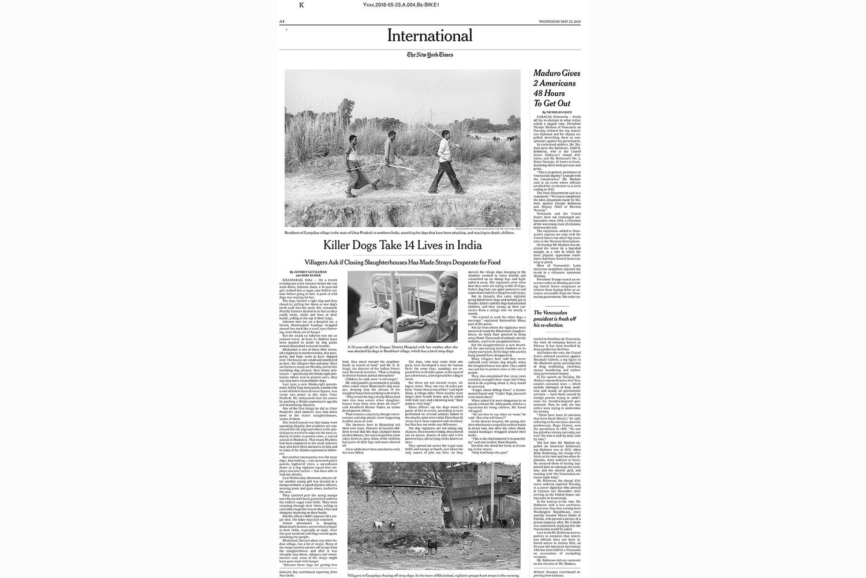 Killer dogs take 14 lives in India