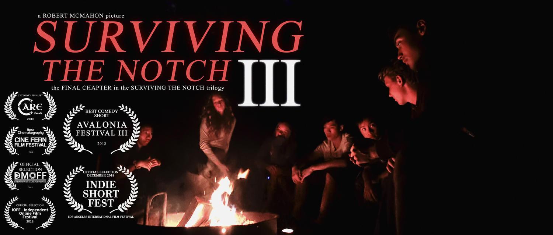 Surviving the Notch 3