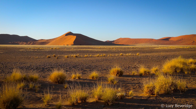 Dune valley