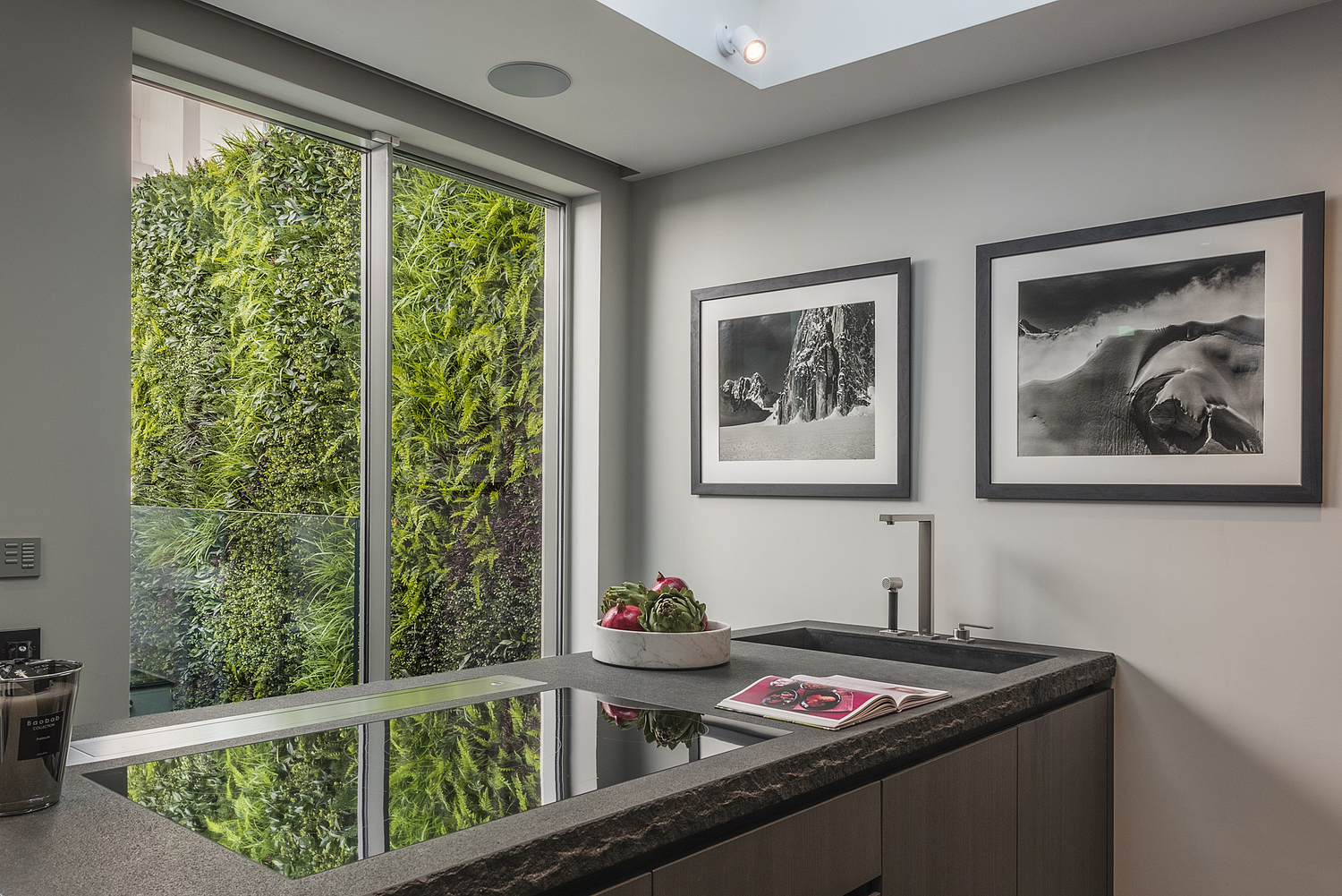 Kitchen detail with view of living wall, London