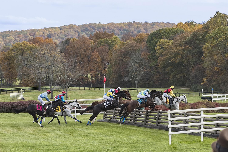 Horse racing, Virginia, USA