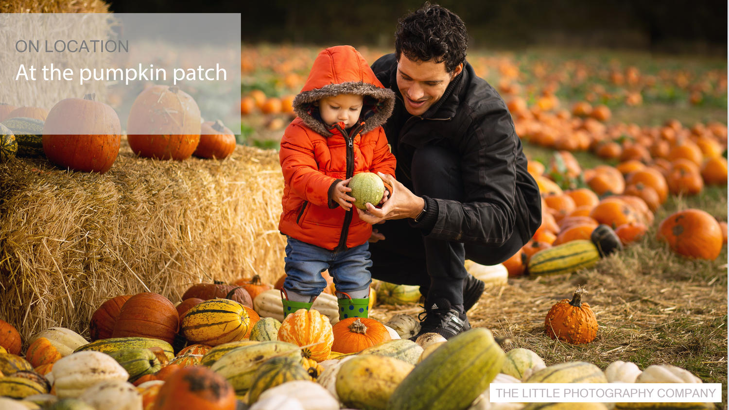 On Location: At the Pumpkin Patch | Newborn & Baby Photographer | Colchester, Essex