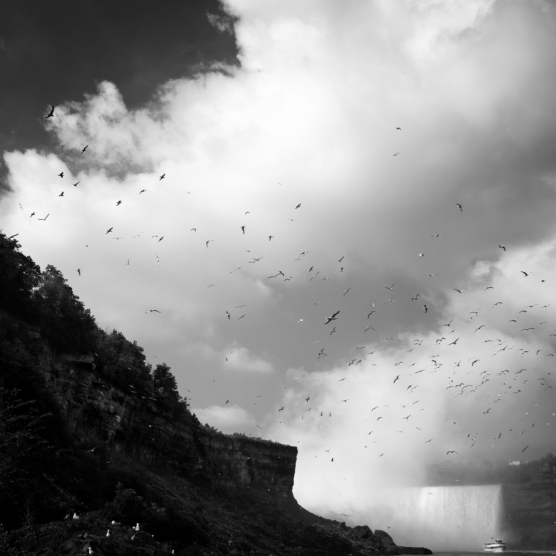 Niagara Falls, Study 7