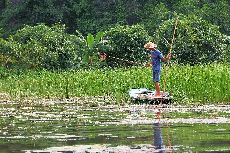 Ninh Binh Fisherman