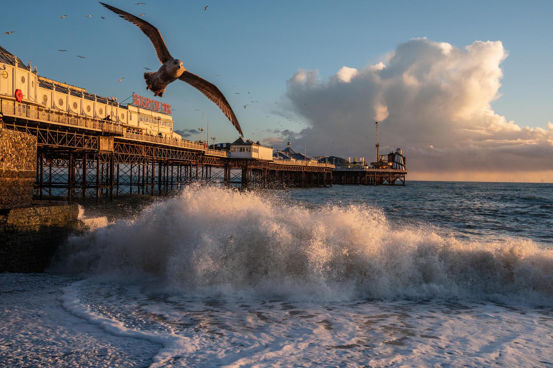 Brighton Collection