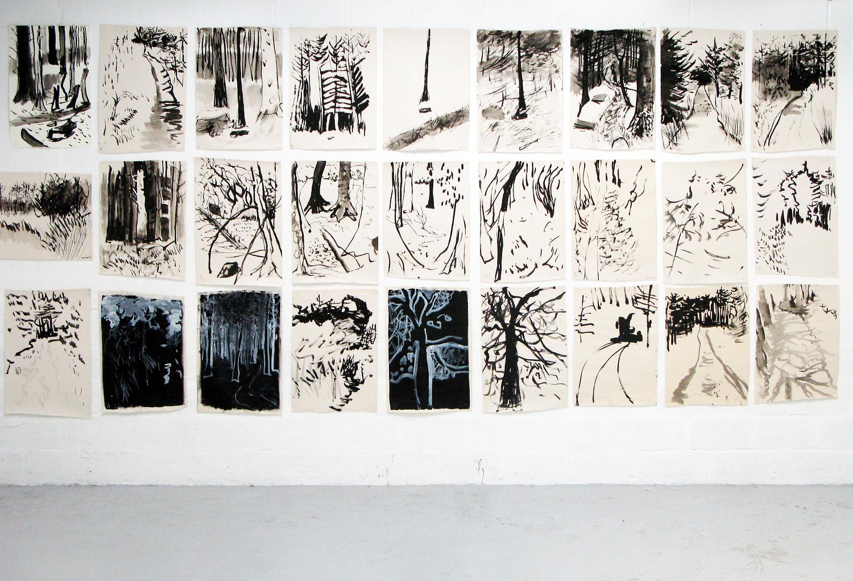 52 Ink Drawings (detail) Karen Howse
