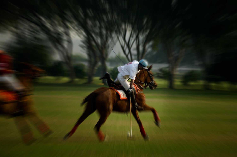 Polo,Delhi