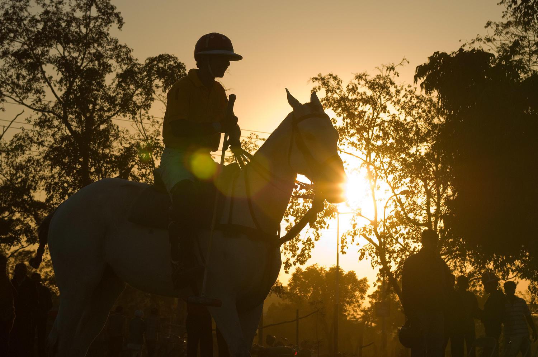 Polo, Jaipur