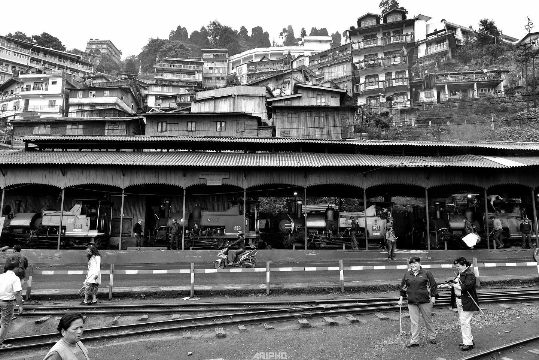 Darjeeling 2019