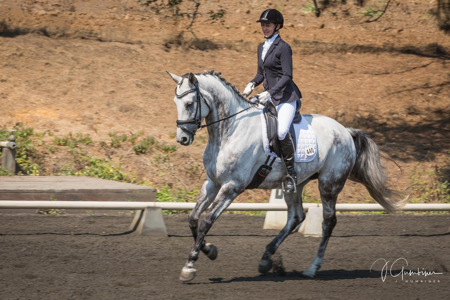 Dressage on the Central Coast
