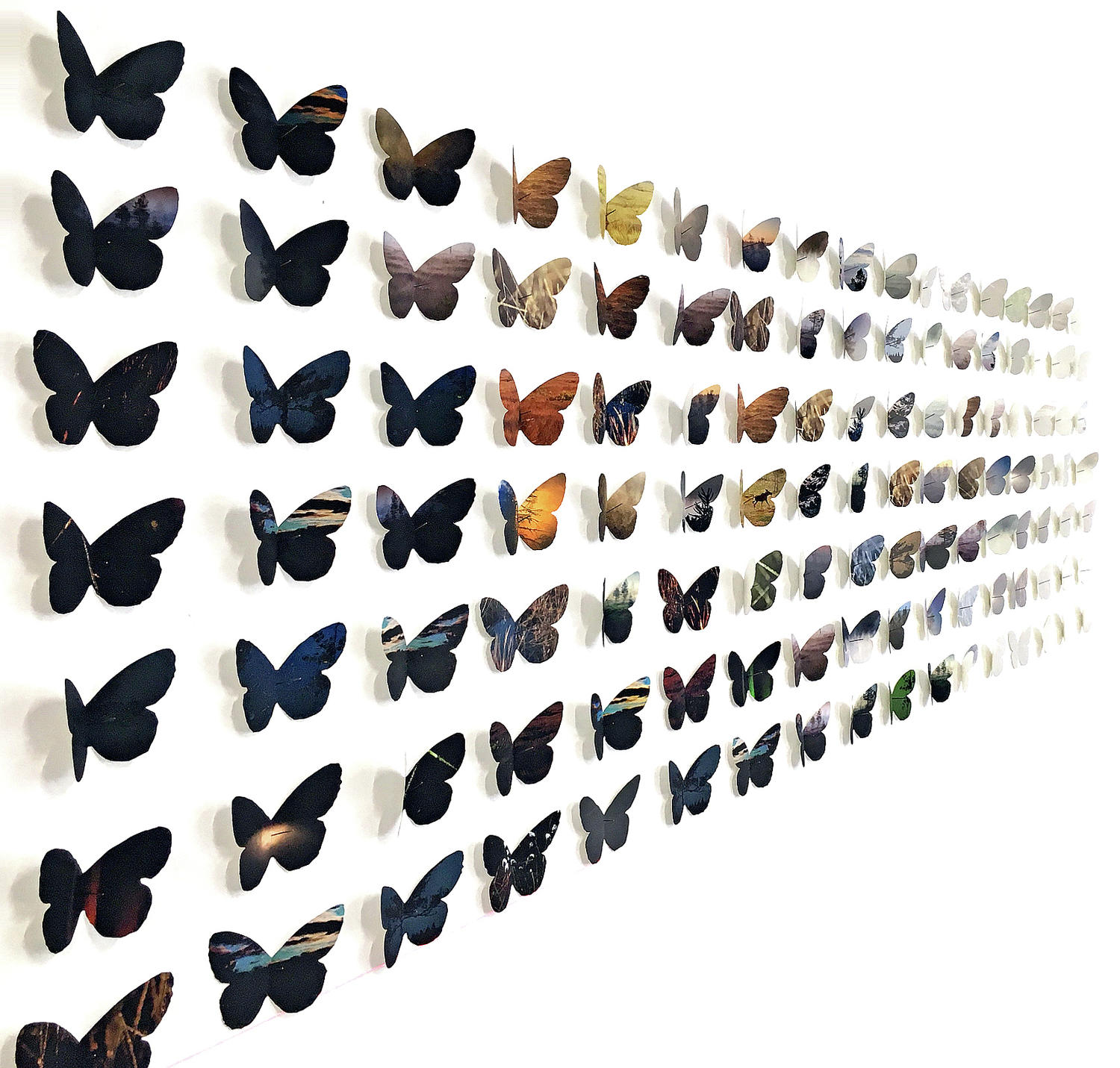 Butterfly effect - installation, 2018