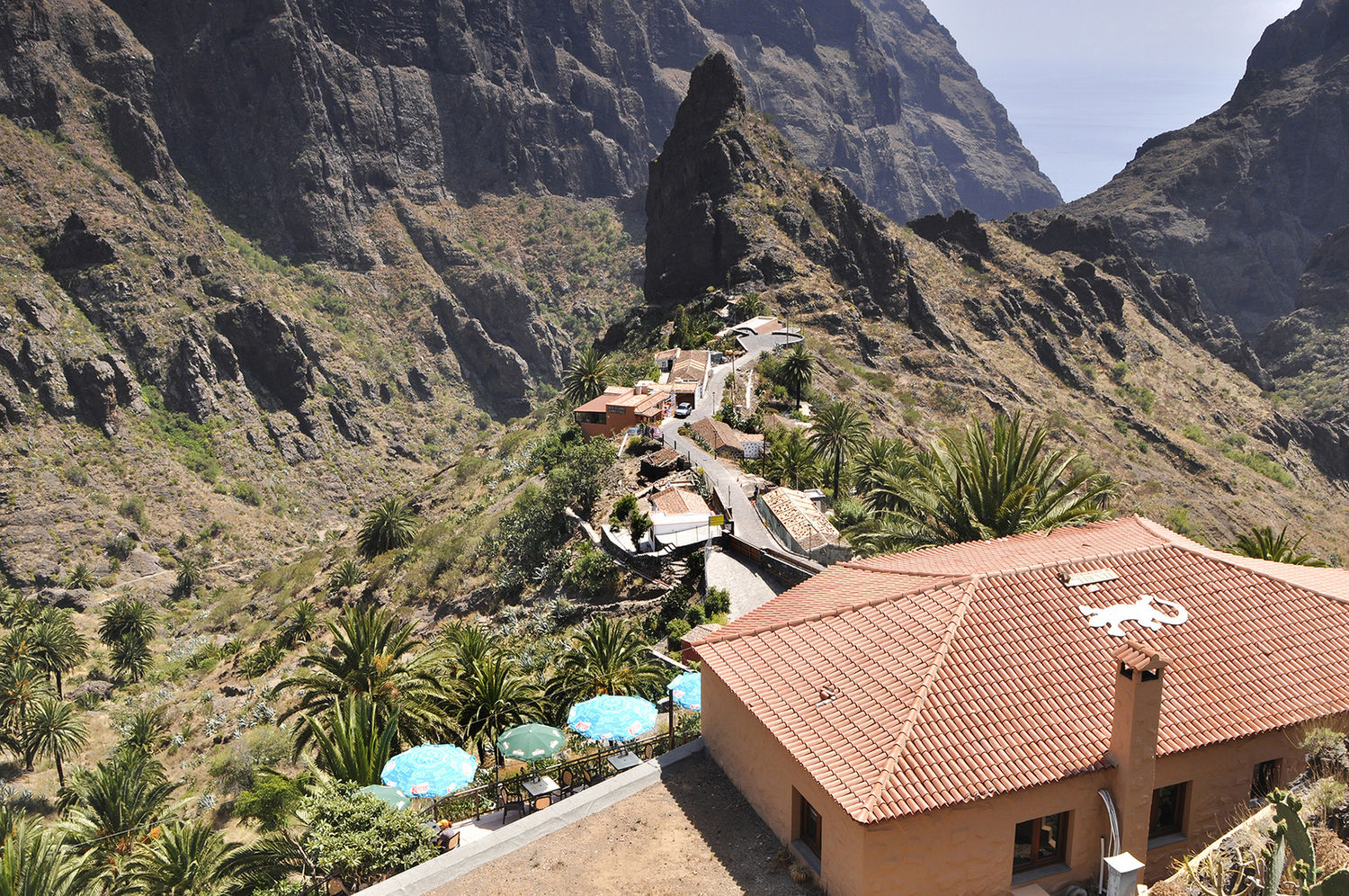 Tenerife Photo Gallery