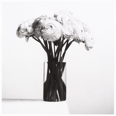 Argentique noir & blanc
