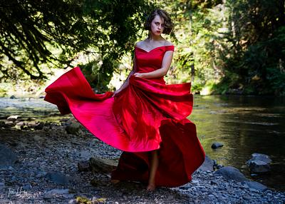 Fashion in the Forest