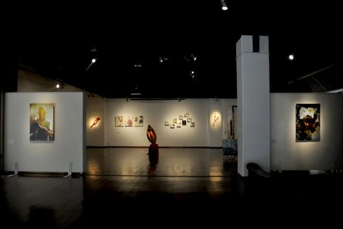 Fibre fables Exhibition gallery Display at Stainless gallery, New Delhi