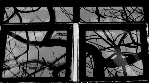 Enigmatic Window 01
