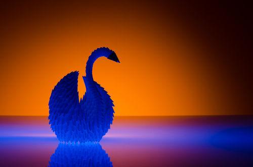 Origami Swan- January 25, 2014