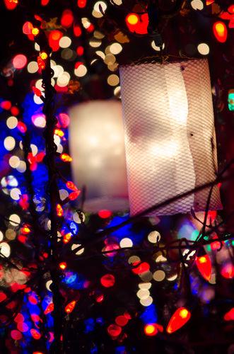 Lanterns- December 16, 2013