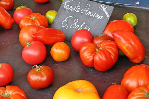 Tomatoes - Nice, France
