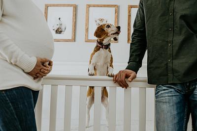Maternity | Leimgardt
