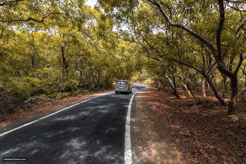 The road to Jim Corbett