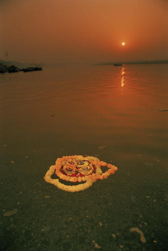 Floral offering to a loved one floating on the Ganges in early morning light.