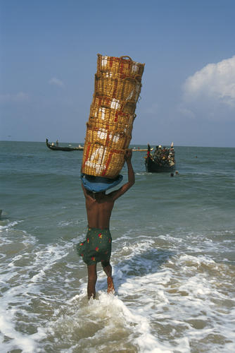 Fisherman carrying baskets of fish close to Alappuzha, Kerala.