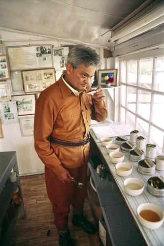 Rajah Banerjee, the owner of the Makaibari Tea Estate tasting tea at his office in Kurseong, West Bengal.