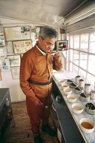 Rajah Banerjee, the owner of the Makaibari Tea Estate tasting tea at his office in Kurseong, West Bengal.