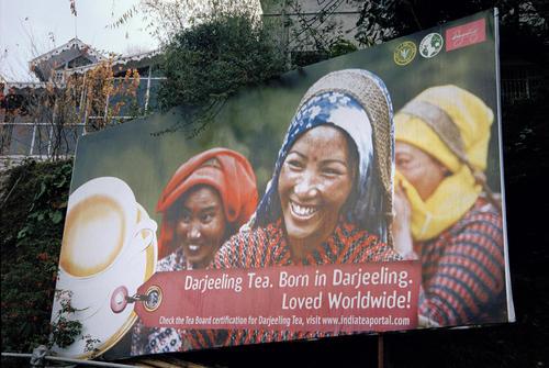Placard advertising tea in Darjeeling.