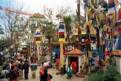 Colourful Buddhist prayer flags around Mahakal Temple at Observatory Hill, Darjeeling.