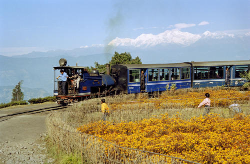The Darjeeling Himalayan Railway (also known as the DHR or 'Toy Train') at the Batasia Loop garden, Darjeeling, West Bengal.