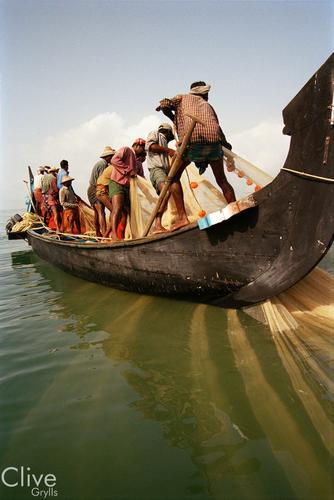 Fisherman pulling in their nets close to Alappuzha, Kerala.