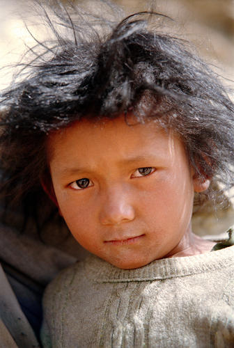 Young boy belonging to the nomadic Chang-Pa People at Tso-Kar, Ladakh.
